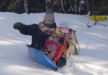 man, child, and dog attempt to fit on sled